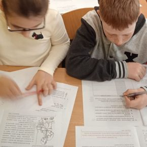 Завершився другий цикл загальнодержавного зовнішнього моніторингу якості початкової освіти
